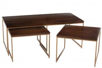 Tables basses gigogne en manguier et métal or - RAPH